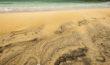 Luskintyre Beach - Harris