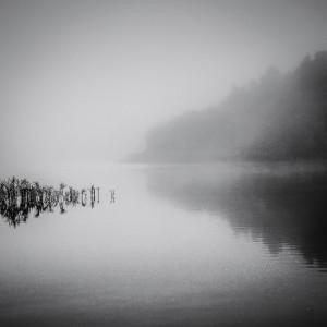Misty Mornings-3